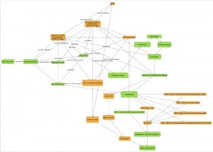 OpenLabyrinth 'Branched Model'